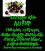 TAILLE DE GUEPE 100G