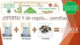 . OFERTA Moringa+Semillas