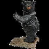 Bear Series - Tür Stopper