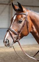 """Zaum """"Soft"""" von Harrys Horse"""