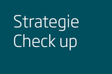 IT Strategie Check up