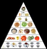 """Ernährungsprogramm """"Vegetarische Ernährung für Einsteiger"""""""
