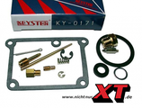 DT175 E Vergaser Reparatursatz / Carburettor Repair Kit