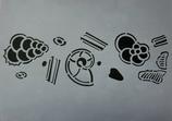 Kreidezeit Mikrofossilien 1