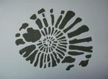 Kreidezeit Ammonit 2