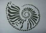 Kreidezeit Ammonit 1