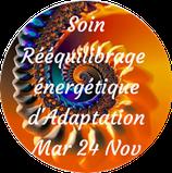 201124 - Soin Rééquilibrage énergétique d'Adaptation (Période Rein)