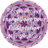 200324 - Soin Rééquilibrage énergétique pour l'Adaptation