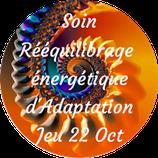 201022 - Soin Rééquilibrage énergétique d'Adaptation (Période Rate)
