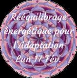200217 - Soin Rééquilibrage Énergétique d'adaptation pour l'évolution