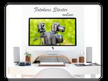 Fotokurs Starter Online