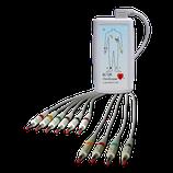 EC-12R 12 CHANNEL RESTING ECG SYSTEM