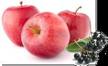 Apfel-Holunderbeere