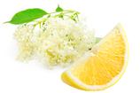 Holunderblüten-Zitrone