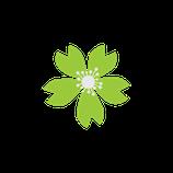 Matizador mate verde lima