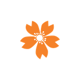 Matizador mate naranja calabaza