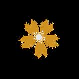 Matizador mate amarillo desierto