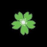 Matizador mate verde hoja