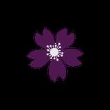Matizador mate violeta