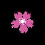 Matizador mate rosa medio