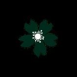 Matizador mate verde bosque