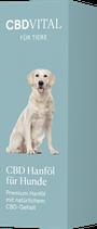 CBD Hanföl für Hunde