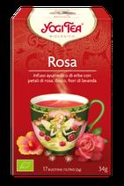 Yogi - Rosa