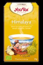 Yogi - Himalaya