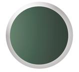 Julbo Regatta Wechselscheibe Spectron3CF Grün