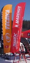 Flaggen | BatFan S Klein | Grösse: 65x200cm