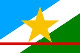 Roraima State Flag