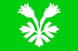 Oppland Flag
