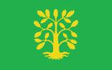 Vest-Agder Flag
