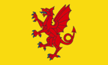 Somnew Flag