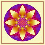 """28 - Mandala-Karte """"Die Lotusblüte ist geöffnet"""""""