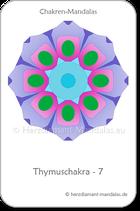 Thymuschakra 7