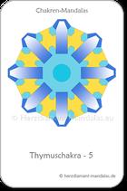 Thymuschakra 5