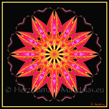 "39 - Mandala-Karte ""Aufbruch"""
