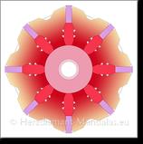 Wurzel-Chakra 6