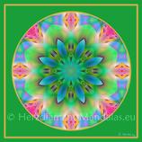 """11 - Mandala-Karte """"Lebe deine Träume"""""""