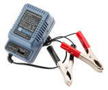 Chargeur pour batterie 2 v, 6 v ou 12 v