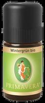 Wintergrün bio