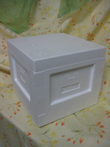 Mini - Plus - Beute - Komplett Ablegerkasten