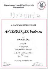 4. Turnier der Agilitynachwuchsserie 2007 am 26. Oktober 2007 beim HSZV Eugendorf