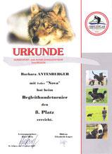 Turnier der Begleithunde I am 17. Juni 2007 beim Verein HSAZ Seenregion in Abersee