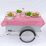 Fahrradanhaenger Maiporter Z130 als Picknick Tisch gedeckt