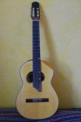 Dolphin's type guitar Uwe Kropinski