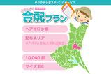 【さくらさく合配プラン×ヘアサロン】水戸市(茨城大学周辺中心)・10,000部・B6