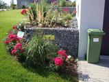 , Amriswl, Galerien, Garten, Gartengestaltung, Lorandi, Bepflanzung, Rosen