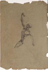 Anatomie, Mann